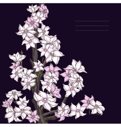 Branch of hand drawn cherry blossom on the dark vector image