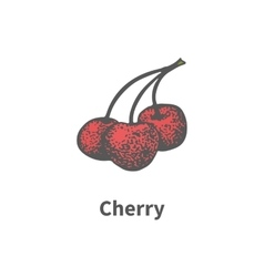 Hand-drawn ripe red juicy cherry on branch vector
