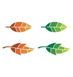 leaf logos vector image