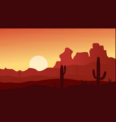 Mexican texas or arisona desert nature at sunset vector