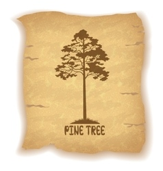 Pine tree on old paper vector
