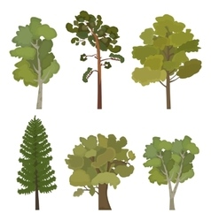 Set of flat trees for infographics vector