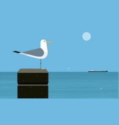 silver gull vector image
