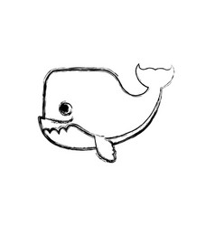whale cartoon drawing animal vector image