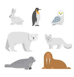 arctic snow animals vector image
