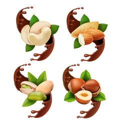 liquid melted pouring chocolate and nuts vector image vector image