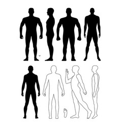 Fashion man body full length bald template vector