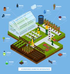 hydroponics and aeroponics infographic set vector image