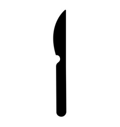 knife icon image vector image