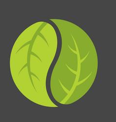Leaf yin yang logo vector