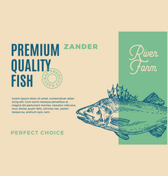 premium quality zander abstract fish vector image