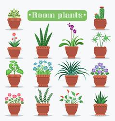 Decorative room plants in clay pots vector