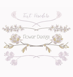 floral text dividers flower design vector image