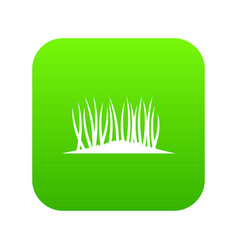 grass on ground icon digital green vector image