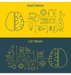 Left and right brain functions concept vector