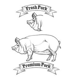 Premium pork meat label butcher emblems or vector