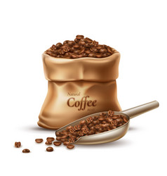 realistic coffee sack with scoop and beans vector image
