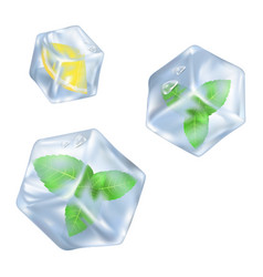 Refreshing ice cube with slice lemon and mint vector