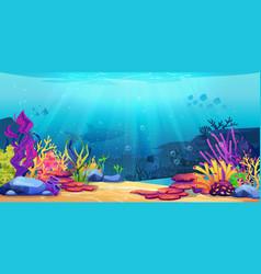 Underwater world sea bottom coral reef seaweeds vector