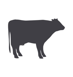 Black cow isolated on a white background vector