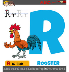 letter r worksheet with cartoon rooster vector image