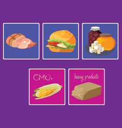 meats sweets fast food gmo heavy products vector image