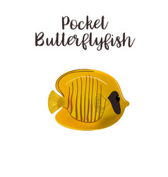 pocket butterflyfish realistic vector image
