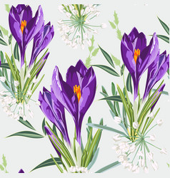 seamless floral violet crocus flowers and herbs vector image