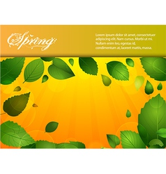 Spring background with leafs and sunshine vector