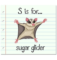 Flashcard letter s is for sugar glider vector