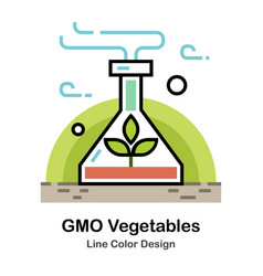 Gmo vegetables line color icon vector