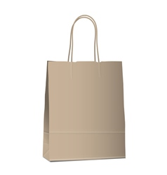 Empty shopping brown bag on white vector image vector image