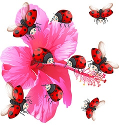 Ladybugs flying around the flower vector image