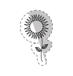 sunflower spring cut line vector image vector image