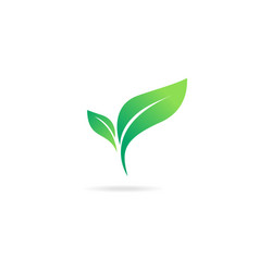 green abstract leaf icon natural set on white vector image