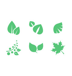 green leaves set parts of plants end trees of vector image