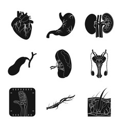isolated object body and human sign set of vector image