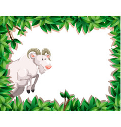 Nature frame with goat vector