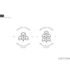 Organic cotton logo outline style vector