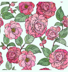 seamless pattern with camellia flowers camellia vector image