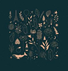 set different decorative elements dark vector image