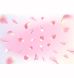 background with realistic flying rose petals pink vector image
