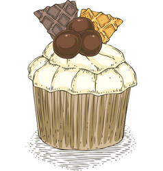 cupcake with wawwles and chocolate balls vector image