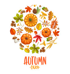 fall banner with autumn leaves vector image