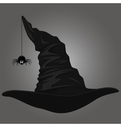 Hat and spider vector image