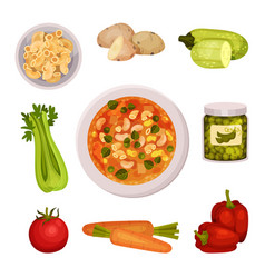 Ingredients for appetizing vegetable minestrone vector