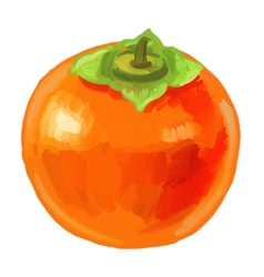 Picture fruit persimmon vector