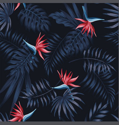strelitzia red dark pattern vector image