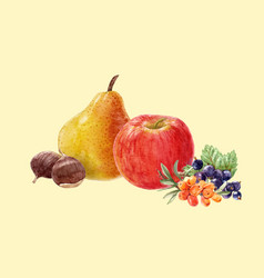 Watercolor fruit composition vector