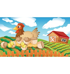 A hen and chicks vector image vector image